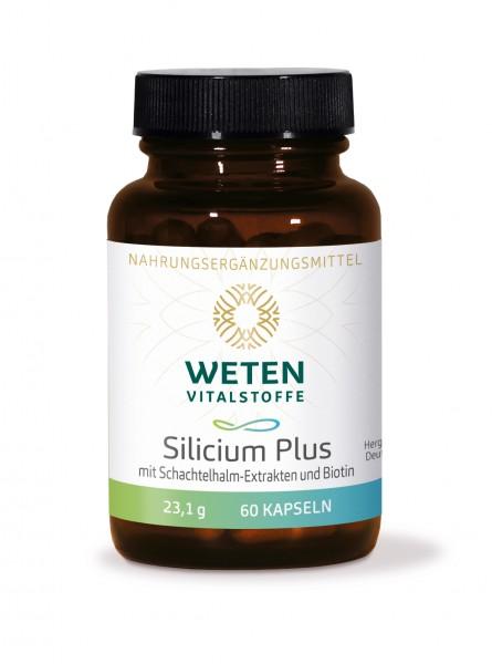 Silicium Weten - 60 Kapseln